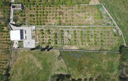 Bodrum Bahçelievlerde Geniş Bahçeli Orjinal Taş Ev